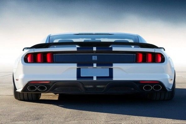 Blue-White Color Ford Shelby Rear Profile